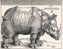 Engraving of a rhino by Albrecht Durer